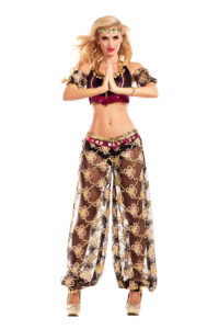 PK765 - Harem Honey Womens Costume